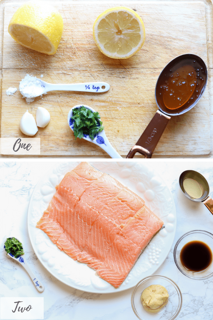 Honey Garlic Salmon Recipe - How to Make Honey Garlic Salmon