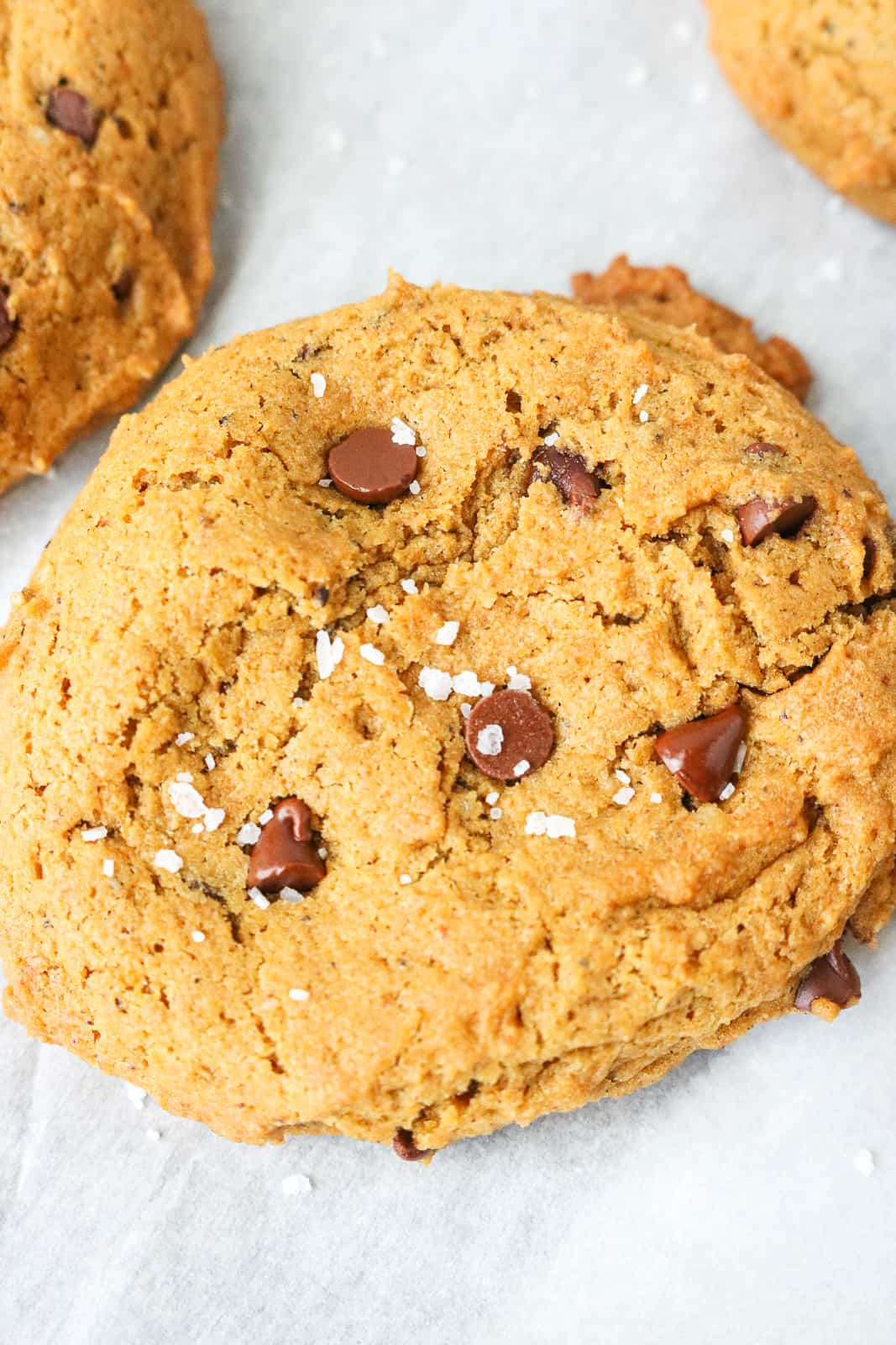 Vegan Pumpkin Chocolate Chip Cookies with salt on top