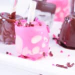 Chocolate Dipped Marshmallows on white plate